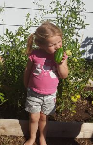 eating a cucumber